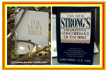 Bible.Strongs.(C)NjRout21stMay2014.Small.Red&Gold.