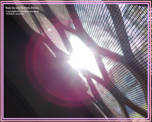 Sun in my Screen Door. (C) NJRout Oct 2012