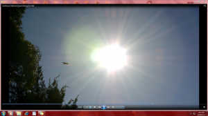 SunBirdSizes(C)NjRout10thAug2013Sun&Rays 088