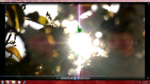 TheSuninApricot.9.(C)AfternoonSun(C)NjRout9.47pm27thSept2013 009 Camera's&Antennae.