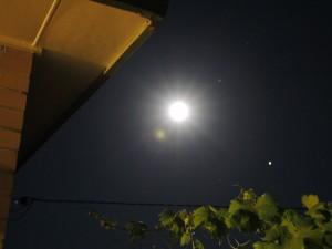 MoonooMcamera(C)NjRout12.46am15thJan2014 001