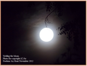 Tickling the Moon re-(C) NoeleneJoyRout Nov 2012
