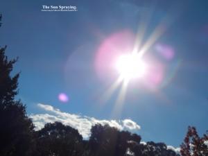 SunSpraying.(C)NjRout8.38pm28thApril2015 017.Lge.
