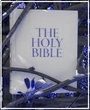 Bible Purple.1. (C) Noelene Joy out 12th January 2013
