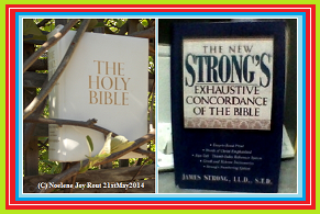 Bible & Strong'sConcordance.(C)NjRout 15th Dec 2014