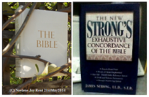 Bible&StrongsConcordance. (C) NjRout21stMay2014.Small