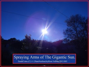 Sun&Coins.(C).11.28amNoeleneJoyRout.3rdMay2013.003.Smaller.SprayingArms.