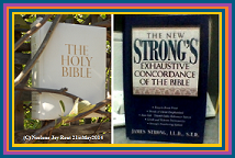Bible.Strongs.(C)NjRout21stMay2014.Small.Navy
