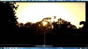 Sun.The.SunMarch(C)NjRout8.15am7thMarch2014 003