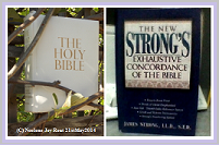 Bible.Strongs.(C)NjRout21stMay2014.Small.Purple.