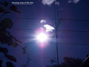 Sun&Cables(C)NjRout7.45pm15thJan2015 029 SunSpraying.PB.