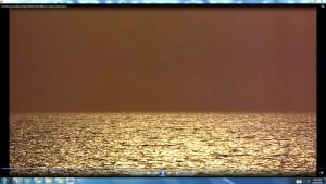 SunTreadingonBondiSea.2.BondiBeach.(C)NjRout3.46pm24thNov2013 098SunTreading.FishJumping.