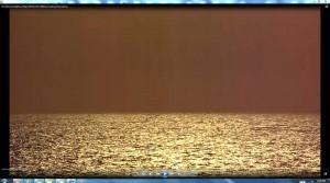 SunTreadingonBondiSea.A.BondiBeach.(C)NjRout3.46pm24thNov2013 098SunTreading.FishJumping.