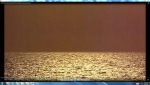 SunTreadingonBondiSea.BondiBeach.(C)NjRout3.46pm24thNov2013 098SunTreading.FishJumping.