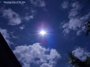 TheSun(C)NjRout11.39am22ndNov2015 021 SunSpraying.Large.