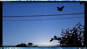 Sunrise.2.TheSun.(C)NjRout9.40am18thFeb2016 010