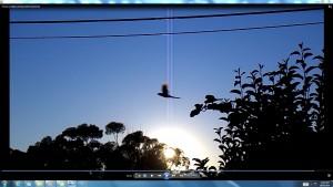 Sunrise.TheSun.(C)NjRout9.40am18thFeb2016 011