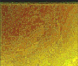 Scrape.2.(C).NjRout.6.32pm24thSept2013-017 Golden