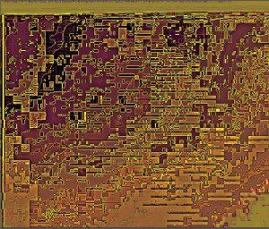 Scrape.6.(C).NjRout.6.32pm24thSept2013-017 Golden