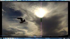 Seagull&GiganticCablesofTheSunatBondiBeach.1.BondiCopyright(C)bracketedNjRout6.05pm23rdNov2013 015 Sun&itsCableatBondiBeach
