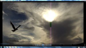 Seagull&GiganticCablesofTheSunatBondiBeach.2.BondiCopyright(C)bracketedNjRout6.05pm23rdNov2013 015 Sun&itsCableatBondiBeach