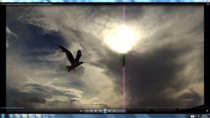 Seagull&GiganticCablesofTheSunatBondiBeach.3.BondiCopyright(C)bracketedNjRout6.05pm23rdNov2013 015 Sun&itsCableatBondiBeach