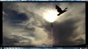 Seagull&GiganticCablesofTheSunatBondiBeach.8.BondiCopyright(C)NjRout6.05pm23rdNov2013 015 Sun&itsCableatBondiBeach