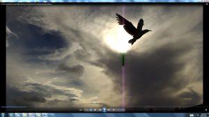 Seagull&GiganticCablesofTheSunatBondiBeach.9.BondiCopyright(C)NjRout6.05pm23rdNov2013 015 Sun&itsCableatBondiBeach
