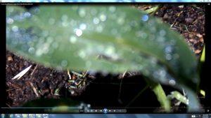 coins-sun-whiteline-light-c12-05pm6thnov2016-045