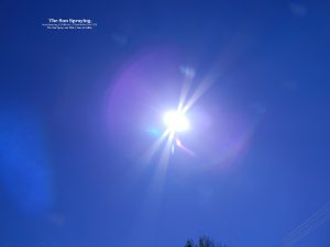 sunsprayingcnjrout11-07am6thnov2016-028-sunspraying